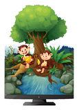 Deux singes mangeant la banane par la rivière Photo stock