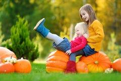 Deux soeurs assez petites ayant l'amusement ensemble sur une correction de potiron Photographie stock