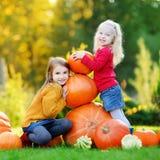 Deux soeurs assez petites ayant l'amusement ensemble sur une correction de potiron Image libre de droits