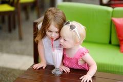 Deux soeurs buvant du milkshake Photos libres de droits