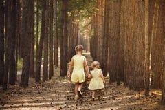 Deux soeurs dans des robes jaunes passent par la forêt tenant la main Image stock