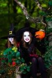 Deux sorcières dans la forêt, concept de Halloween Photographie stock libre de droits