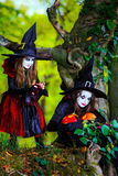 Deux sorcières dans la forêt, concept de Halloween Image stock