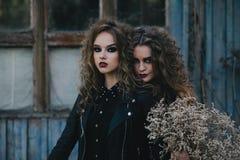 Deux sorcières de vintage ont recueilli la veille de Halloween Images stock