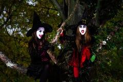 Deux sorcières s'asseyant sur l'arbre Image libre de droits