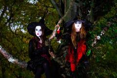 Deux sorcières s'asseyant sur l'arbre Image stock
