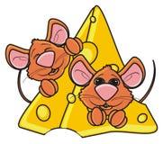 Deux souris fouissent jeter un coup d'oeil hors d'un morceau de fromage Image stock