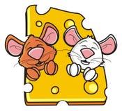 Deux souris fouissent jeter un coup d'oeil hors d'un morceau de fromage Photo stock