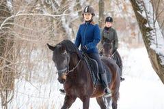 Deux sportives montant des chevaux de baie en parc d'hiver Photos libres de droits