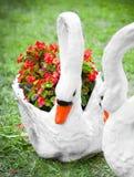 Deux statues des cygnes et des pots de fleur Image stock