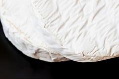 Deux têtes de fromage de camembert ou de brie sur le fond foncé, foyer de selectov Vue supérieure Pour le fond, avec l'espace de  Images libres de droits