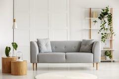 Deux tables basses rondes avec des usines dans des vases en verre à côté de sofa scandinave gris dans le salon élégant avec l'éta image stock