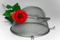 Deux tamis de cuisine avec le rouge sont montés sur le fond blanc Photo stock