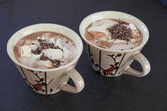 Deux tasses de cacao Photos libres de droits