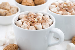 Deux tasses de cacao avec la guimauve et les biscuits, plan rapproché Image stock