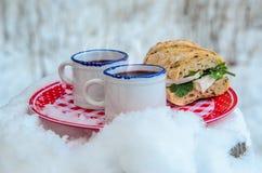 Deux tasses de vin chaud chaud d'un plat dans une forêt neigeuse Photo libre de droits