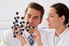 Deux techniciens regardant In Laboratory modèle moléculaire Images libres de droits