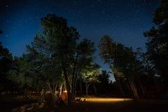 Deux tentes réglées parmi les arbres Photos stock
