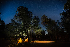 Deux tentes réglées parmi les arbres Photographie stock