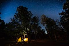 Deux tentes réglées parmi les arbres Images stock
