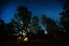 Deux tentes réglées parmi les arbres Images libres de droits