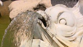 Deux tirs de caméra, détails d'une fontaine, Aranjuez, Espagne banque de vidéos