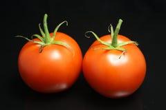 Deux tomates Photographie stock
