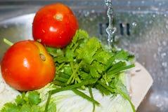 Deux tomates fraîches rouges et pasley vert sont nettoyés par l'eau Photos libres de droits