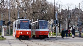 Deux trams colorés blanc rouge se tenant côte à côte à la station à Tallinn, Estonie Images stock