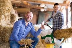 Deux travailleurs de ferme en grenier à foin Photos stock