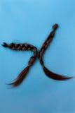 Deux tresses coupées- noires de cheveux Images stock