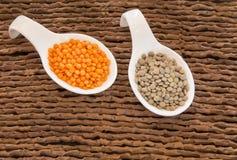 Deux types de lentilles - culinaris de lentille Photographie stock libre de droits