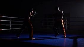 Deux types se préparent aux concours kickboxing Mouvement lent banque de vidéos