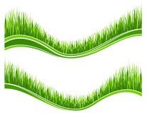 Deux vagues d'herbe verte Photos stock