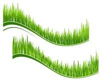 Deux vagues d'herbe verte Image stock