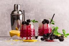 Deux verres d'ande froid de cocktails un dispositif trembleur en métal Boissons avec la menthe, le citron et les mûres sur un fon Image libre de droits