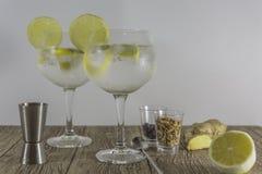 Deux verres de genièvre avec des épices photo stock