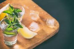 Deux verres de genièvre ou de vodka avec la menthe et le citron avec de la glace photos libres de droits
