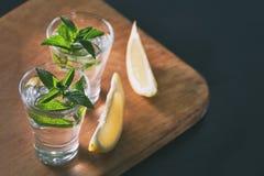 Deux verres de genièvre ou de vodka avec la menthe et le citron sur le backgr en bois image libre de droits