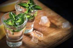 Deux verres de genièvre ou de vodka avec la menthe sur la table en bois photographie stock libre de droits