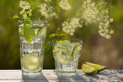 Deux verres de l'eau de seltz sur un vieux conseil, sur la nature Image stock