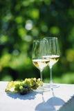 Deux verres de vin blanc Images libres de droits
