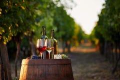 Deux verres de vin blanc et rouge avec des bouteilles au coucher du soleil Photo stock