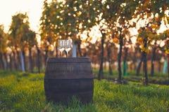 Deux verres de vin blanc sur le vieux baril Photographie stock libre de droits