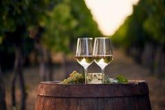 Deux verres de vin blanc sur le vieux baril en bois dehors Photographie stock