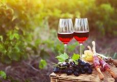 Deux verres de vin rosé avec du pain, la viande, le raisin et le fromage Photos stock