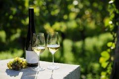 Deux verres de vin blanc image libre de droits