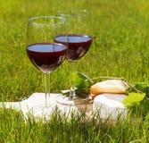 Deux verres du vin rouge fait maison naturel Images stock