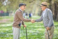 Deux vieux amis se réunissant en parc et se serrant la main Photo stock
