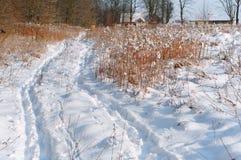 Deux voies de ski, voie de ski sur la neige, voies de ski Photos libres de droits